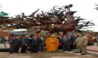 Ngắm tượng Khổng Tước Vương lớn nhất Việt Nam tại Đà Lạt